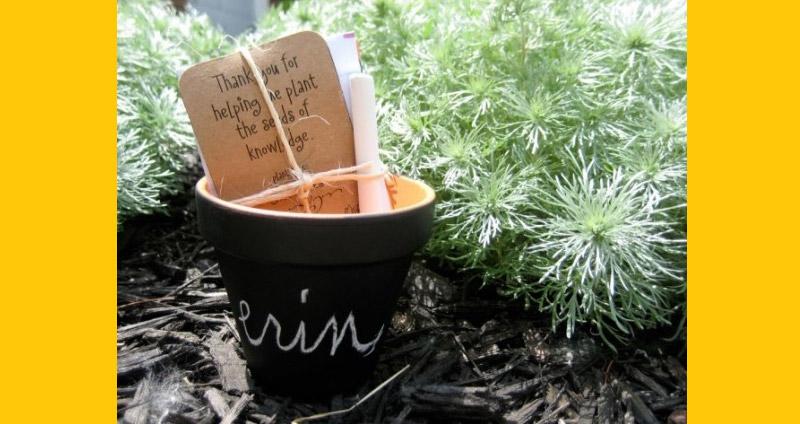 Chalkboard Potplant or Mug